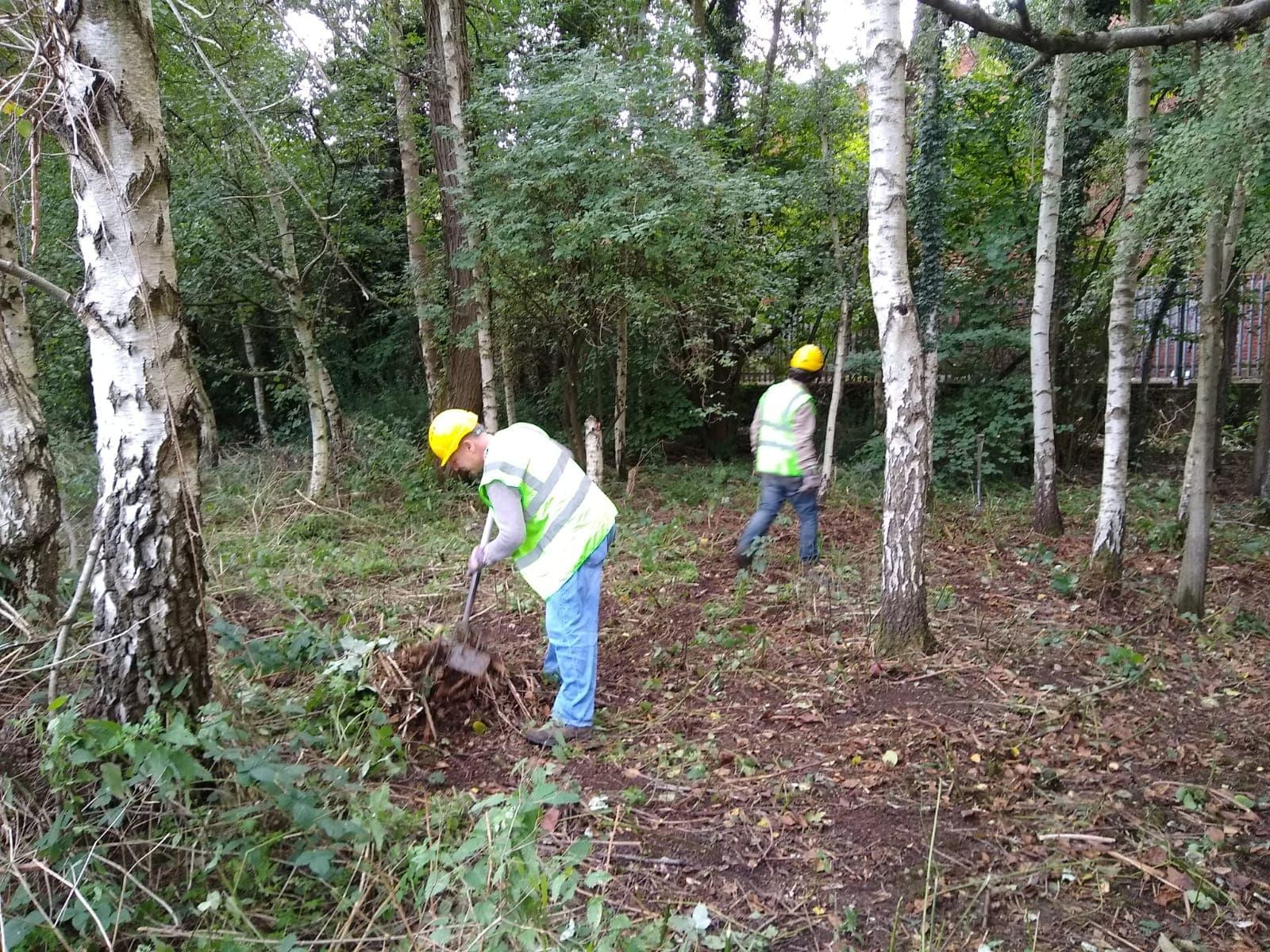 Conservation work 03/09/20