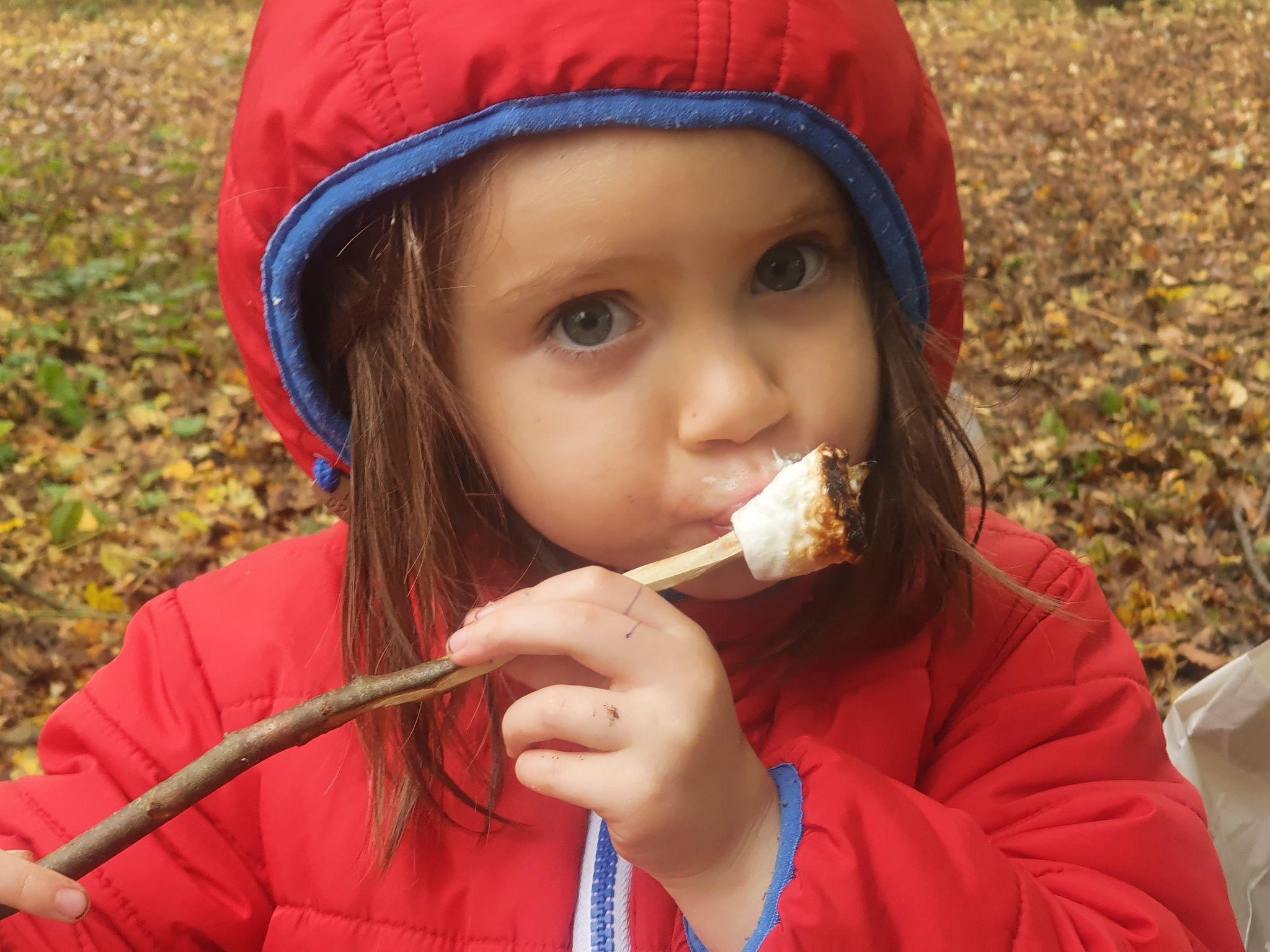 Conservation Work and an Autumn Walk 29 & 30 /10/20