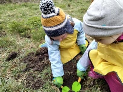 Top Meadow Gardening